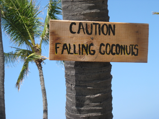 falling-coconuts-sign
